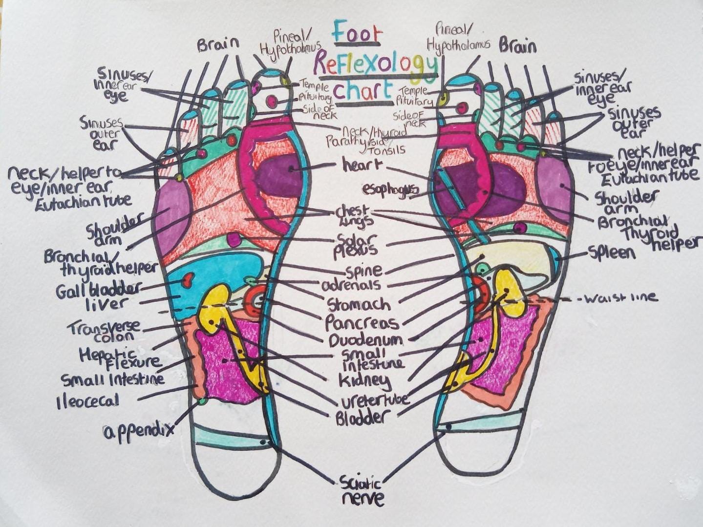 Reflexology diagram - feet